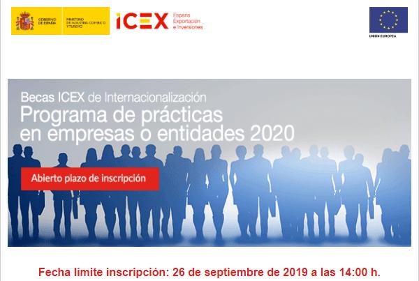 becas ICEX